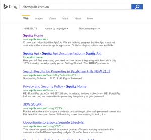 Squiiz Bing